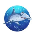 Hammerhead shark cartoon image vector image vector image