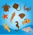 set of sea animals vector image vector image