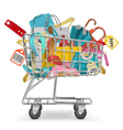 Trolley with Purchase vector image vector image