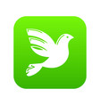 white peace pigeon icon green vector image