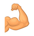 strong biceps gym symbol isolate cartoon vector image