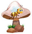 A bee beside the mushroom vector image vector image