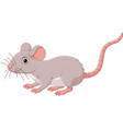 cartoon cute mouse on white background