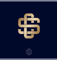 cs monogram luxury logo intertwined gold lines vector image