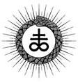design snake ouroboros vector image