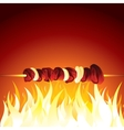 Grill Shish Kebab Prepared on Hot Flame vector image