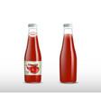 ketchupketchup products ad 3d vector image vector image