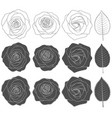 set black and white with roses vector image vector image