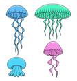 set of color with bright jellyfish vector image