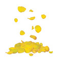 yellow rose petals falling down vector image
