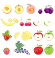 set of isolated fruits and berries vector image