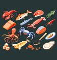 fish superfood isometric icons vector image