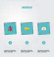 flat icons virus lock clue and other vector image