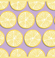 fruit seamless pattern lemon slices with shadow vector image vector image