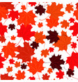 seamless background with red maple leaves vector image vector image