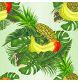 seamless texture tropical fruit with tropical vector image vector image