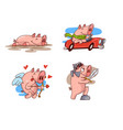 set pink pigs in different situations vector image