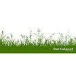 silhouettes green grass spikes and herbs vector image