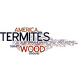 termites in america text background word cloud vector image vector image