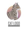 toyger cat flat design vector image vector image