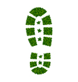 tree leaves as shoe soles vector image vector image