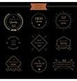 Set of premium quality vintage style elements vector image