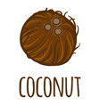 coconut icon hand drawn style vector image