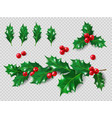 holly set realistic leaves branch red berries vector image