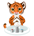 Little Tiger Washing Hands vector image