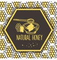 natural honey banners Bio hand drawn set vector image vector image