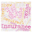 Texas Auto Insurance FAQ text background wordcloud vector image vector image