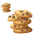 choc chip cookies icon isolated on white vector image