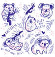 cute koala characters with text vector image vector image