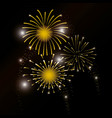 firework decoration explosion to celebrate event vector image