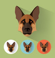 german shepherd portrait with flat design vector image