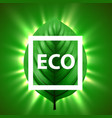 green leaf with light beams and eco frame eco vector image vector image