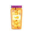 preserved peaches apricots in unlabeled glass jar vector image
