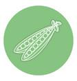 String bean fresh isolated icon