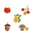 autumn element icon design vector image