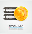 bitcoin infographics business finance vector image