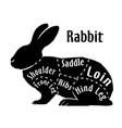 cut of rabbit diagram for butcher rabbit cut vector image