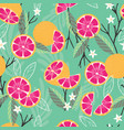 fruit seamless pattern grapefruit with branches vector image vector image