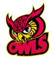 owls head mascot vector image vector image