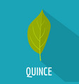 quince leaf icon flat style vector image vector image