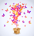 Box and butterfly spring 2016 vector image