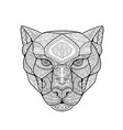 black panther entangle vector image