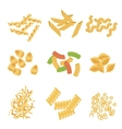 Classic Italian Pasta Types Collection vector image