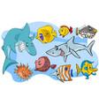 fish marine animal cartoon characters group vector image