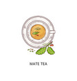 mate tea drink in glass cup traditional argentina vector image vector image