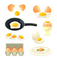 poultry eggs set cooked hen egg farm food vector image vector image